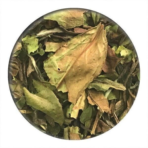 White Pai Mu Tan